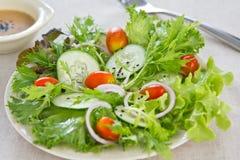 Salade avec la rectification de sésame image libre de droits