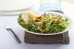 Salade avec la rectification française image stock