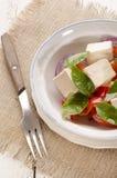 Salade avec la tomate et l'huile d'olive Images stock