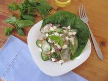 Salade avec le concombre et rougeâtre photos libres de droits