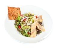 Salade avec le nacho images libres de droits