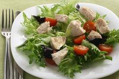 Salade avec le poulet bouilli Photographie stock