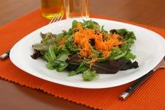 Salade avec le raccord en caoutchouc Images stock