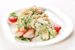 Salade avec le srimp Photo libre de droits