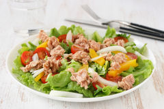 Salade avec le thon Photo stock