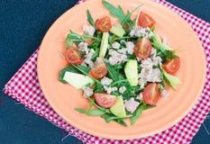 Salade avec le thon et l'avocat Images libres de droits