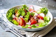 Salade avec les légumes frais de ressort Image stock