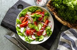 Salade avec les légumes frais de ressort Images stock