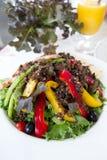 Salade avec les paprikas colorés Images libres de droits