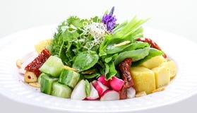 Salade avec les pommes de terre, le radis et les tomates s?ches photographie stock