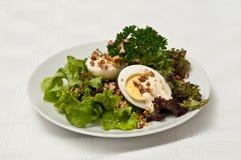 Salade bouillie d'oeufs Images libres de droits