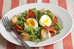 Salade bouillie d'oeufs Image libre de droits