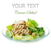 Salade Caesar royalty-vrije stock afbeelding