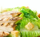 Salade Caesar Stock Foto