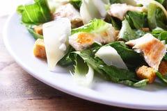 Salade ceaser Royalty-vrije Stock Afbeeldingen