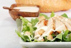 Salade cesar de poulet de plan rapproché Images stock