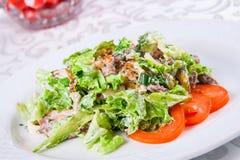 Salade chaude avec du boeuf et des herbes Photos libres de droits