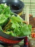 Salade chinoise Photo libre de droits