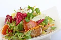 Salade colorée Images stock