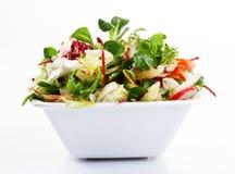 Salade colorée Photo libre de droits