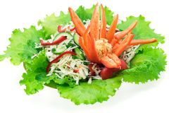 Salade colorée Photographie stock libre de droits