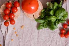 Salade colorée d'été Photos stock
