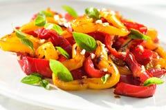 Salade colorée de veg Photographie stock