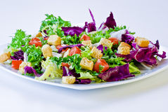 Salade croustillante avec du pain et des tomates photos stock