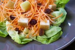 Salade déchiquetée fraîche de raccords en caoutchouc photo stock