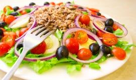 Salade délicieuse avec le thon, tomates, oeufs, olives photographie stock libre de droits