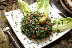 Salade délicieuse préparée dans un plat images libres de droits