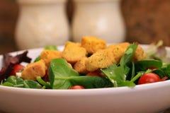 Salade d'épinards avec des croûtons et des tomates photographie stock libre de droits