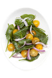 Salade d'épinards et de tomate photographie stock