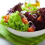 Salade d'été avec de la laitue verte et rouge Photos libres de droits