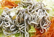 Salade d'anguille et de carotte Images stock