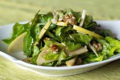 Salade d'Apple et d'écrou Photo libre de droits