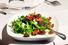 Salade d'Arugula Photos libres de droits