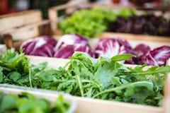 Salade d'Arugula sur la stalle du marché image libre de droits