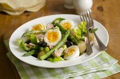 Salade d'asperge et de thon photos stock
