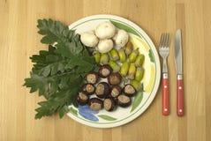 Salade d'automne Photographie stock libre de droits