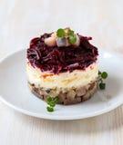 Salade d'harengs russe Photographie stock