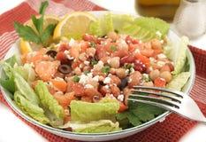 Salade d'haricot photos stock