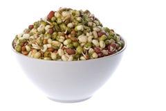 Salade d'haricot Photos libres de droits