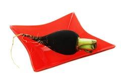 Salade d'ingrédient. Radis noir. Photos stock