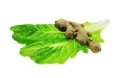 salade d'ingrédients photographie stock libre de droits