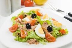Salade d'oeufs avec de la viande de thon Images stock