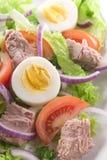 Salade d'oeufs et de thon Image stock