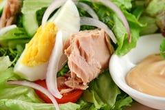Salade d'oeufs et de thon Photos stock