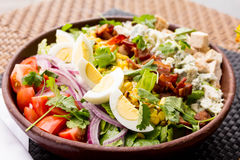 Salade d'oeufs et de tomate Photographie stock
