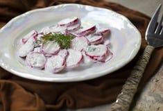 Salade d'un radis image stock